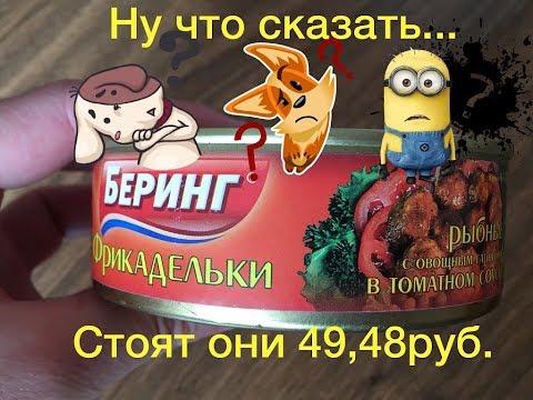 Фрикадельки рыбные с овощным гарниром в томатном соусе за 49,48 рублей.