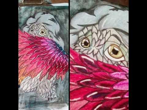 Antiestres Libro De Colorear Para Adultos Criaturas Fantasticas Y