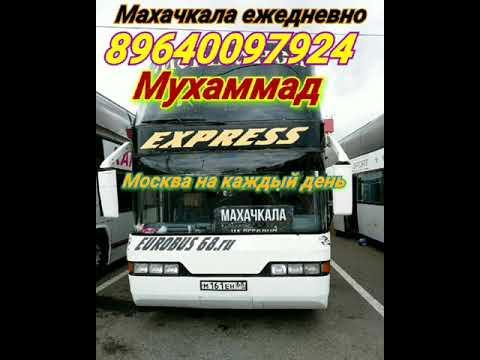 Автобус Москва Махачкала ежедневный заказной