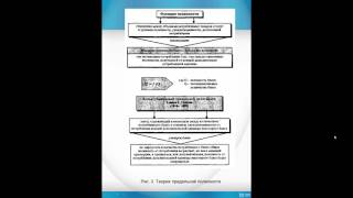 видео П.2. Выбор и ограничение в экономике