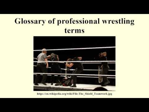 Glossary of professional wrestling terms