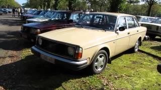 Volvo 244 L walkaround