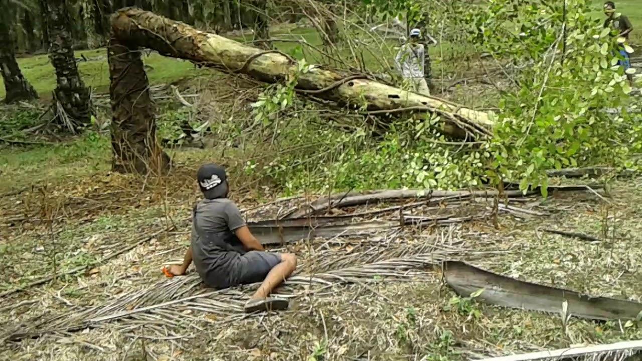 berburu hewan buas youtube rh youtube com game berburu hewan liar di hutan