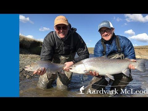 Aurelia Lodge, Rio Grande, Argentina. Fishing For Monster Sea Run Brown Trout.