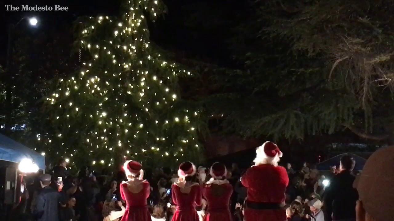 turlock lights its christmas tree the modesto bee - Christmas Tree Lane Modesto Ca