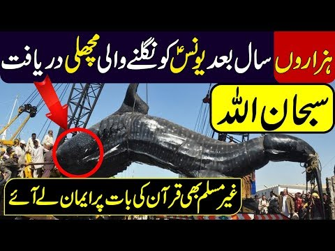 MOST AMAZING STORY OF FISH AND YOUNAS (A.S) | Urdu Discovery