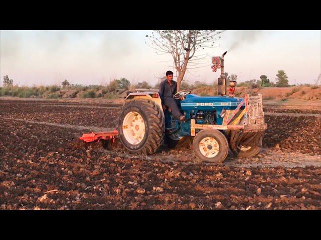 Ford tractor pulling 11 tiller cultivator Ford 4610 FoMoCo