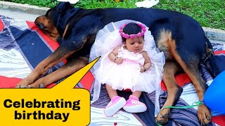 Jerry's 1st birthday with my newborn baby||cute dog videos.