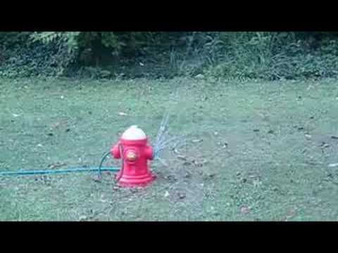 Fisher Price Fire Hydrant Sprinkler