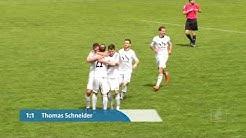 SpVgg SV Weiden - SC Eltersdorf  (Bayernliga, Saison 2016/17 - Spieltag 33)