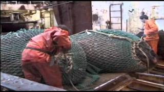 Fishing Gear PART 6 - Shrimp Trawl