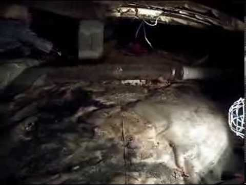 Under house sewage cleanup in hampton virginia beach for Raw sewage under house