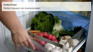 Video Miele koelkast met PerfectFresh   De Schouw Witgoed
