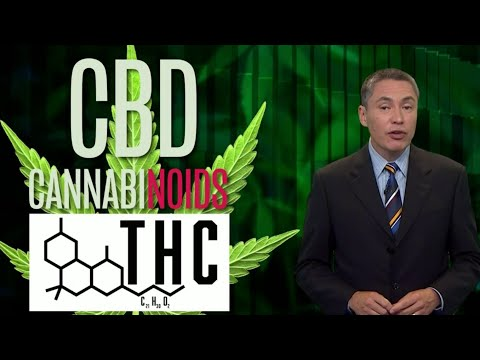 CBD Here, There, Everywhere CBD and Women's Health