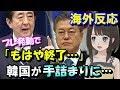 【海外の反応】韓国衝撃!「こんな日本、見たこと無い…」WTOで韓国が絶対に勝てない…
