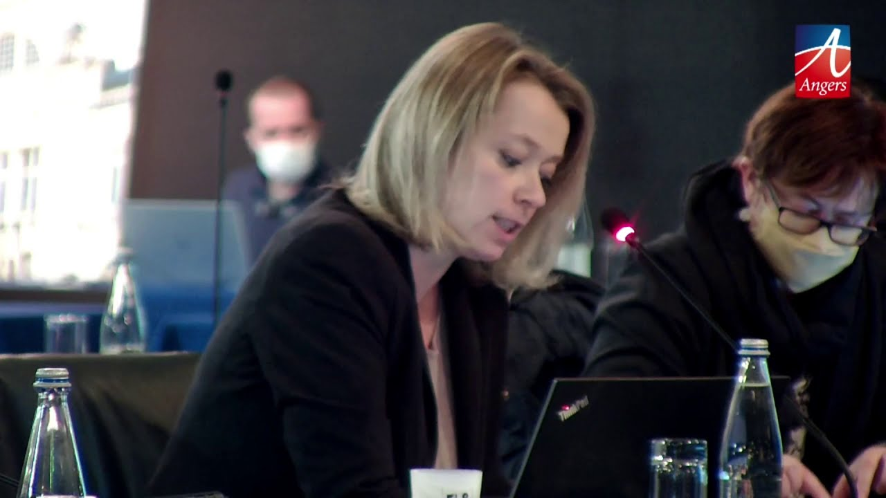 Conseil municipal - 30 novembre 2020 - interventions