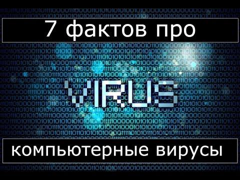 7 фактов о вирусах