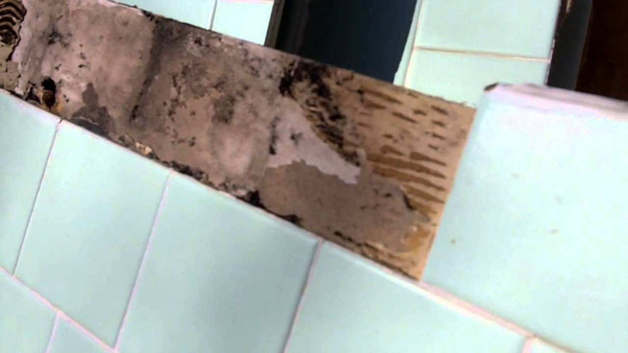 How to identify black mold - Www Restezpropertyservices Com Explains Hazard Of Mold Behind Tiles In A Shower Mov Youtube