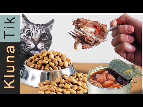 EATING ANIMAL FOOD!! Kluna Tik Dinner | ASMR Eating Sounds No Talk | Petsmart Comer Comida De Animal