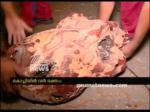 Red sandalwood worth Rs 2 crore seized, kochi vallarpadam port | FIR 25 Oct 2017
