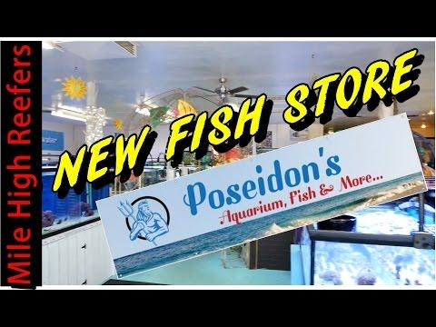 Poseidon's Colorado's Newest Fish Store