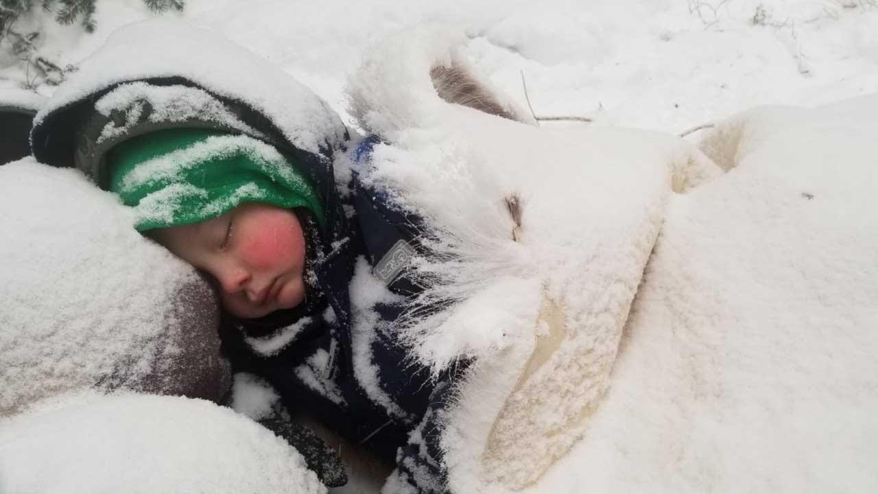 Download Winter Survival Camping with 4 yr old in Alaska - Primitive Survival Shelter