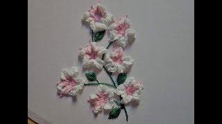 Baixar Hand embroidery. Brazilian embroidery.