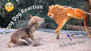 Big Fake Lion Prank Dogs Fans Horn Prank Dogs  Try Not To Laugh Must Watch Funny Video