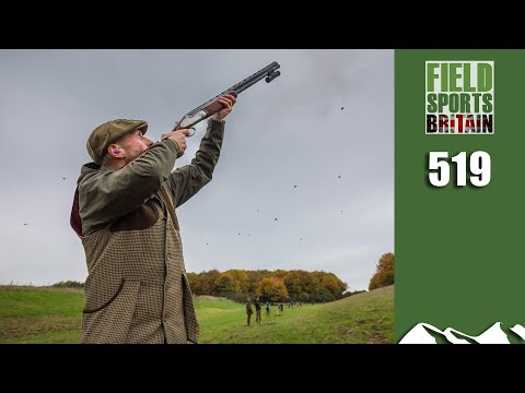 Fieldsports Britain - All About Shotguns For Gameshooting