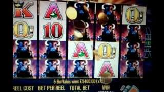 Buffalo Slot Machine - Line Hit.. ONLINE FREE MODE