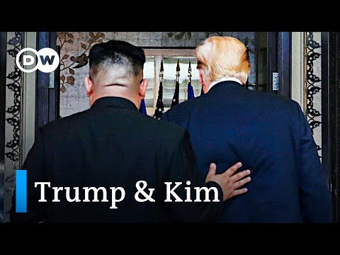 Why is Trump meeting Kim in Vietnam? | DW News