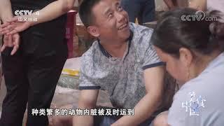 《美食中国》 20191202 5集系列片《品味重庆》(1) 沸腾火锅  美食中国 Tasty China