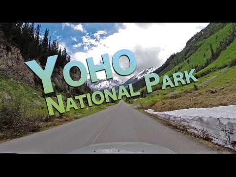 Yoho National Park - The Campers