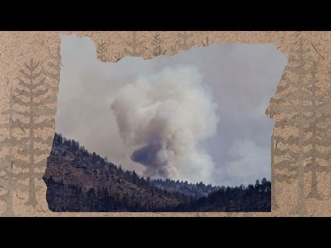 Burned: Poor planning and tactical errors fueled a wildfire