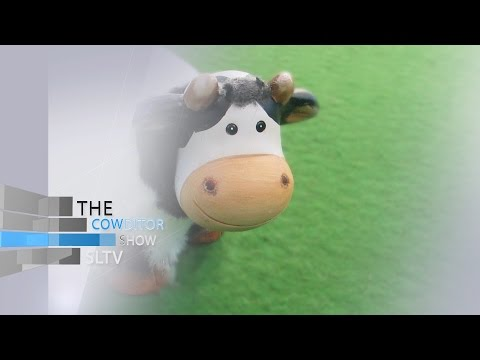 Cowditor - Cows Can Play For Bafana Too