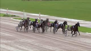 Vidéo de la course PMU CHAMPIONNAT DES TROTTEURS HOLLANDAIS