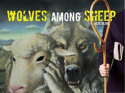"WOLVES among SHEEP: 4/13 ""Ezekiel 9 Pt. 1"" www.thefinalmovements.com"