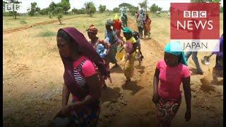アフリカに巨大な緑の壁 地元経済再生へ