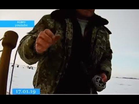 ТРК ВіККА: За кількатижнів браконьєри Черкащини назбиткували на понад 200 тисяч гривень