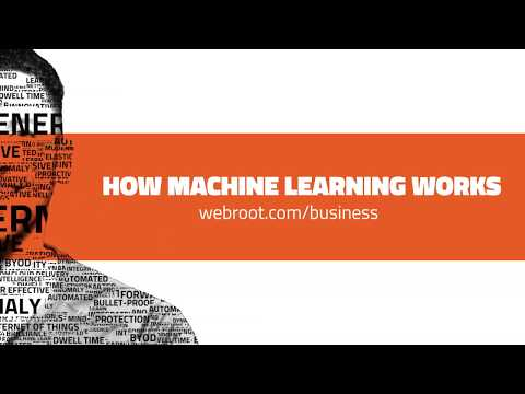 Real-Time URL Classification Using Advanced Machine Learning | Webroot