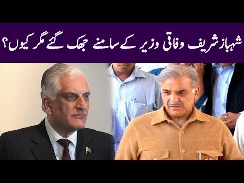 Shahbaz Sharif Shocking Statement For Federal Law Minister