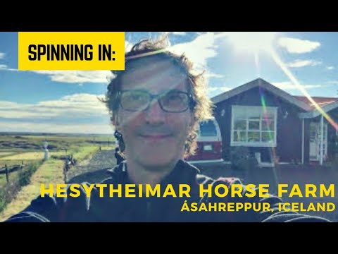 Spinning at the Hesytheimar Horse Farm