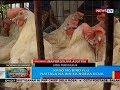 BP: Kaso ng bird flu, naitala na rin sa Nueva Ecija
