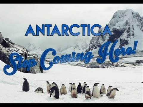 Antarctica: Stop coming here!