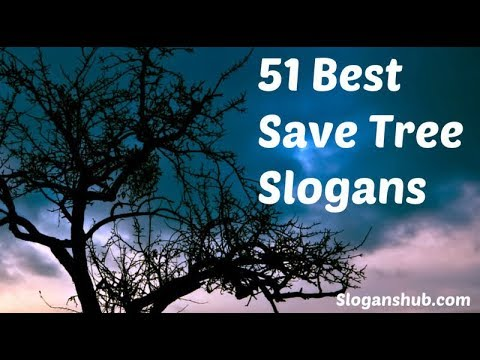 """Top 51 Slogans on""""SAVETREES"""" in English /slogans for your exams/CCE PATERN"""