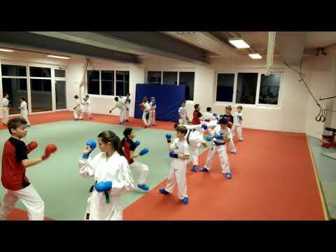 Kinderkaratetraining in Stuttgart Ost (Wagenburggymnasium, mittwochs 17:45-18:45)
