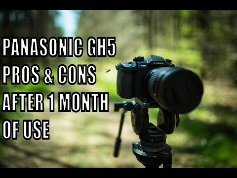 GH5 Watch This Before You Buy