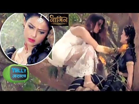 Sesha Dead After Morni Attacked Her? | Naagin | Colors thumbnail