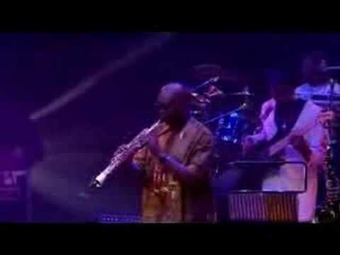 Manu Dibango Live