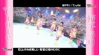 2007_0225(0218 ハロー!モーニング。℃-ute - 桜チラリ.